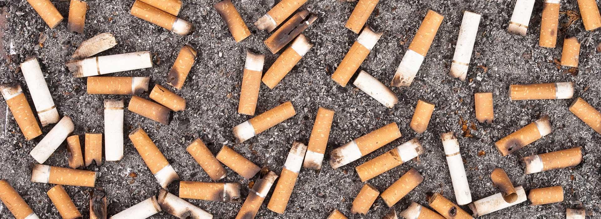 Manfaat Puntung Rokok, yang tak terduga