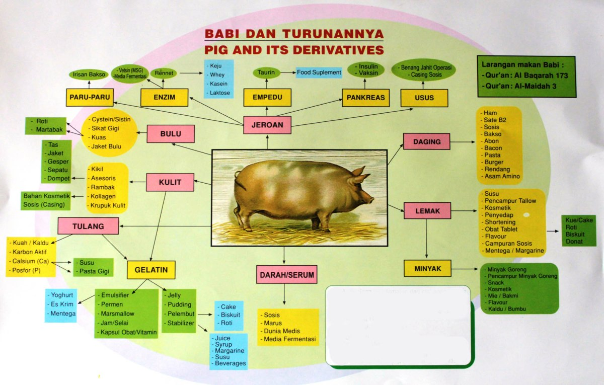 Kode Makanan Yang Mengandung Babi